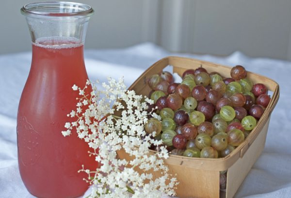 goosberry and elderflower syrup